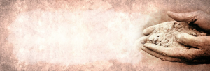 Hands Website Banner